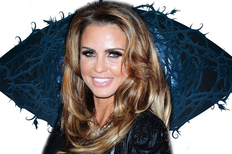 Katie Price Celebrity Big Brother 2015 | Katie Price CBB ...