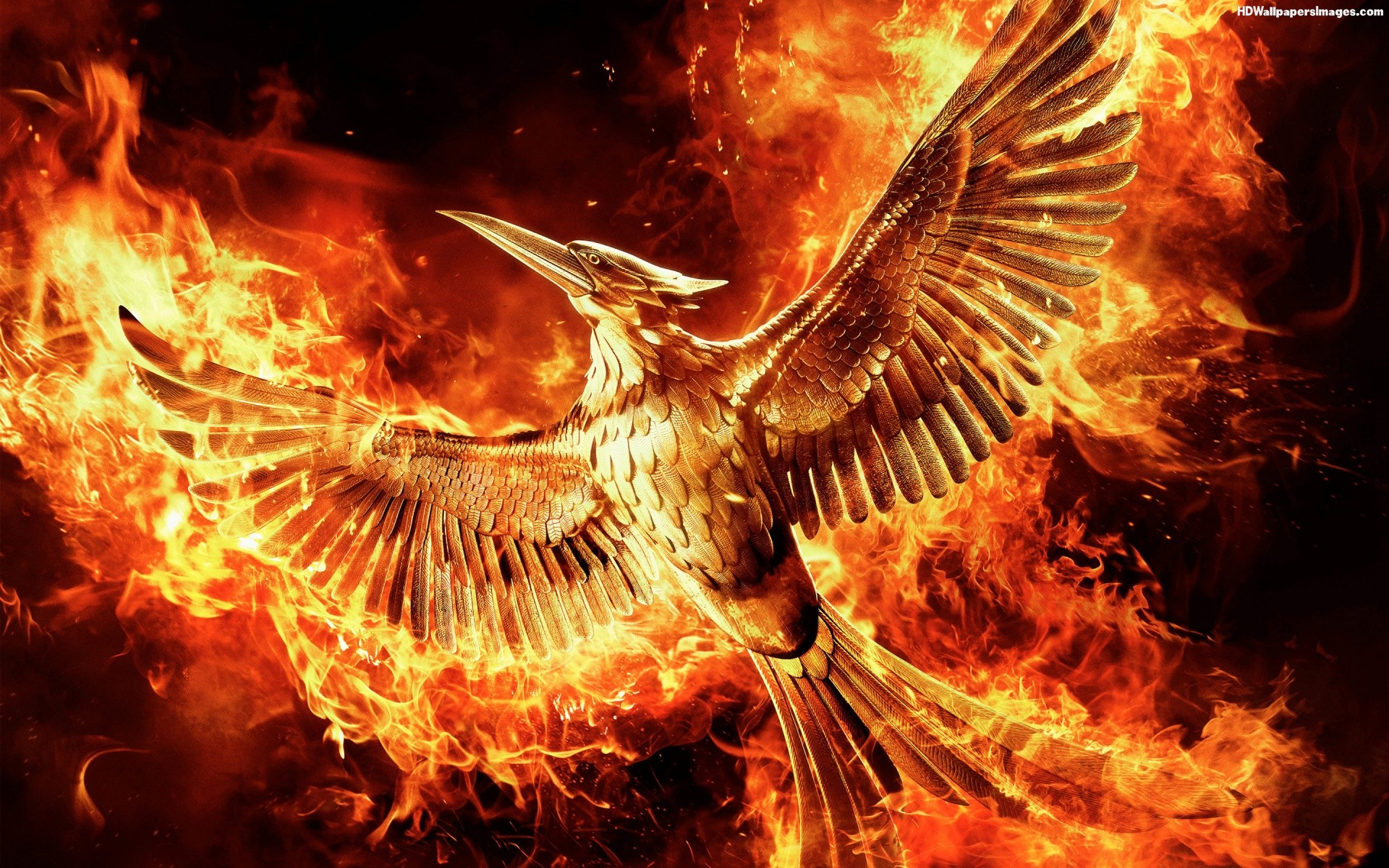 Nonton The Hunger Games: Mockingjay - Part 1 (2019) Sub ...