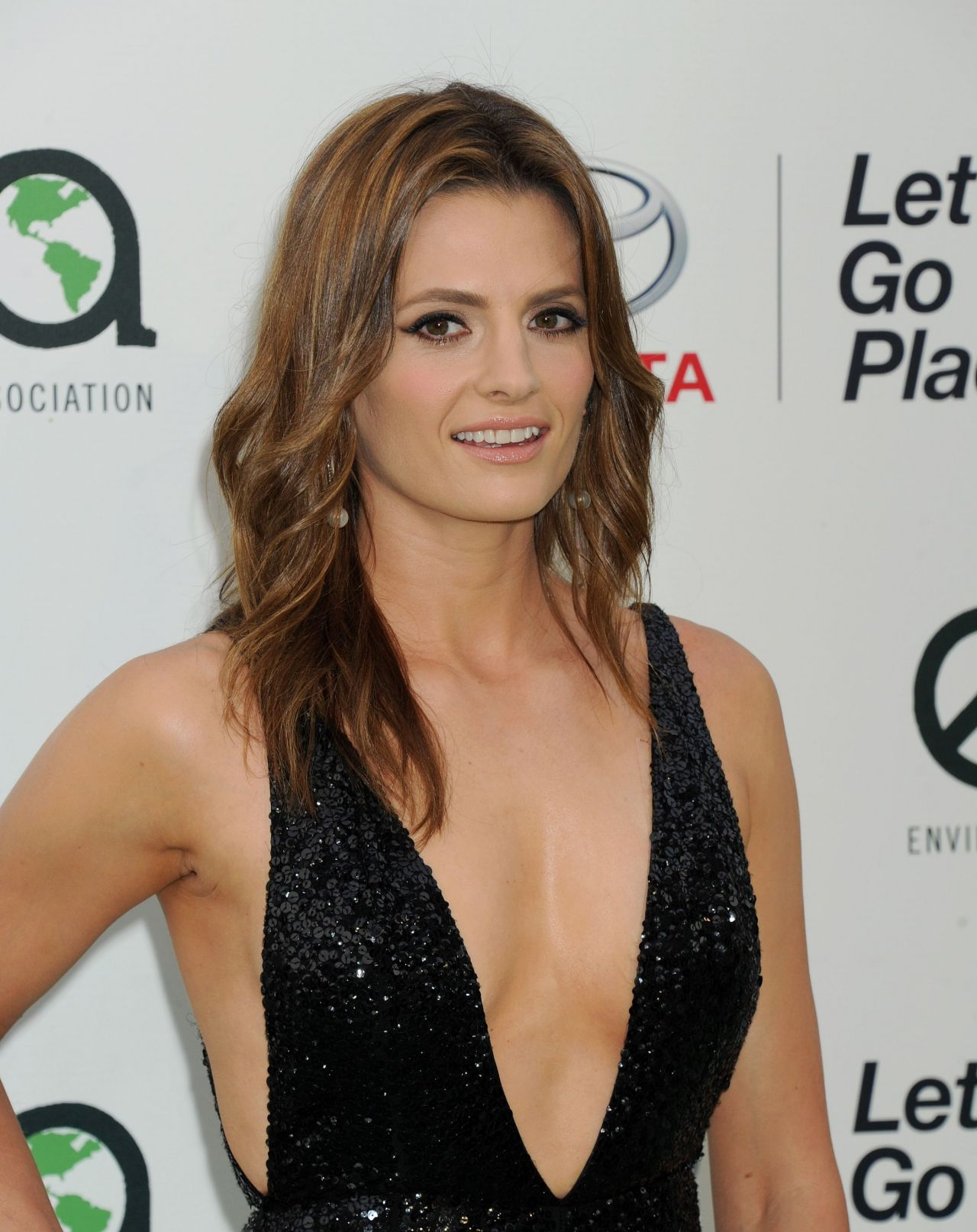 stana-katic-2015-ema-awards-in-burbank_5