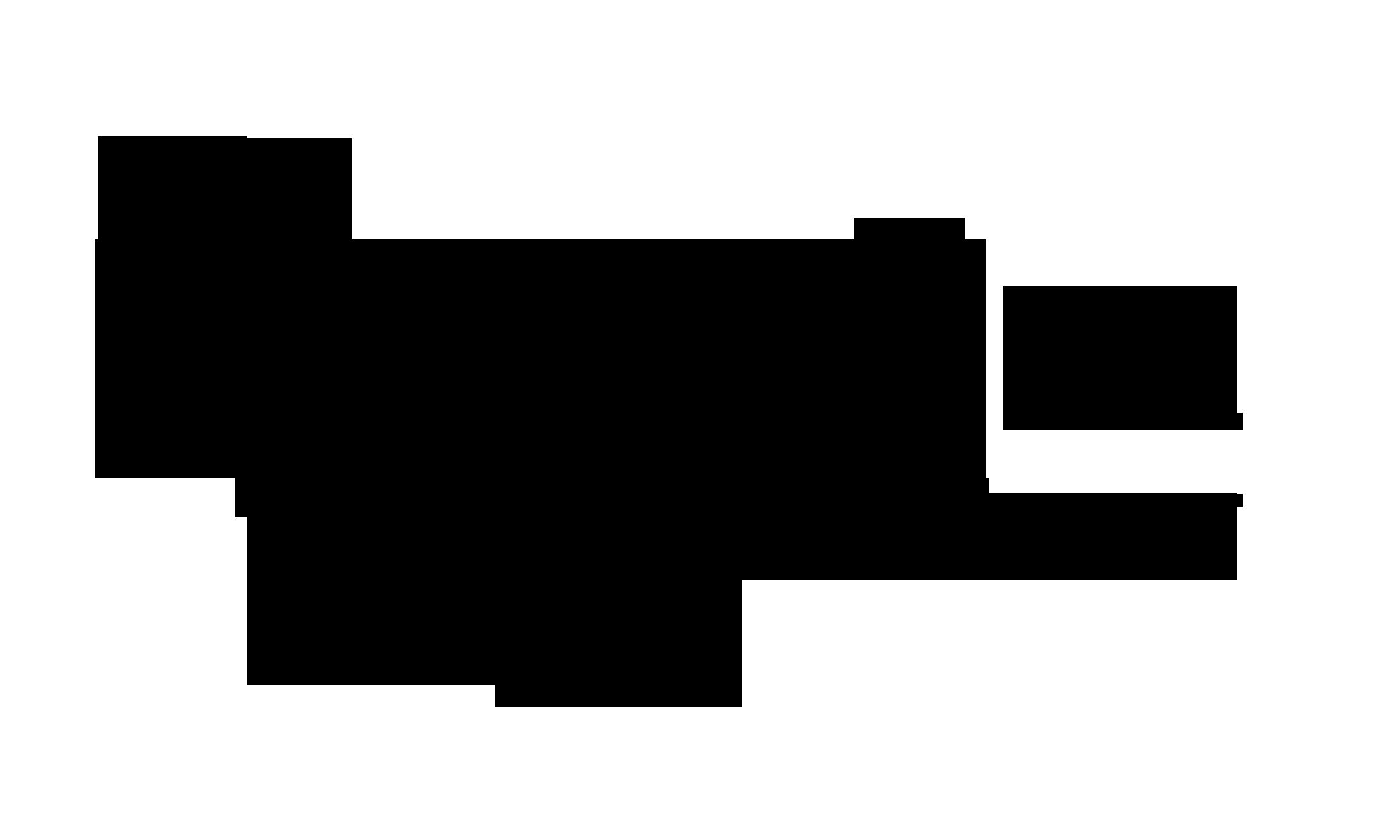 bfi_ff_mono_logo_landscape_pos_2