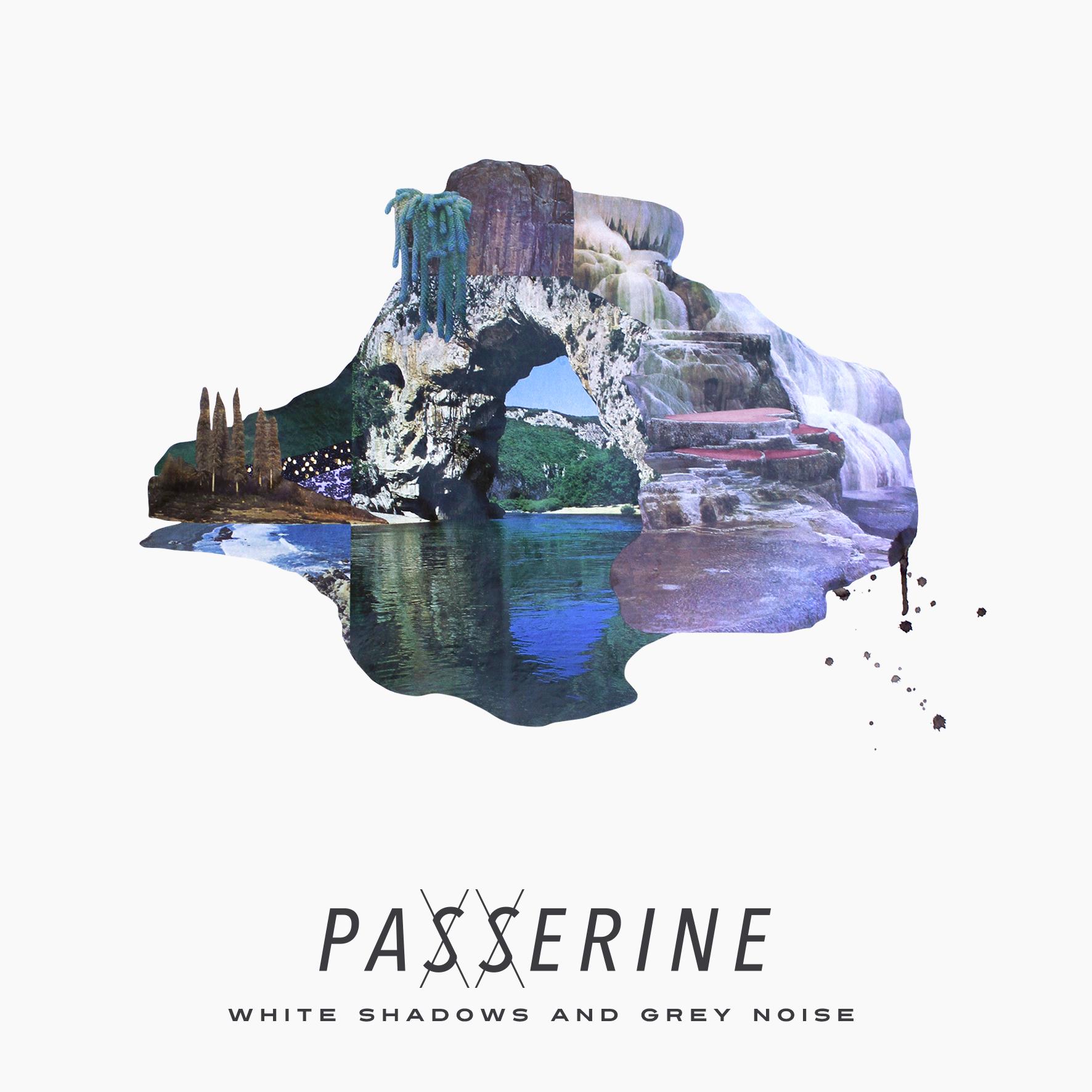 Passerine 16.08.2016ANDREW