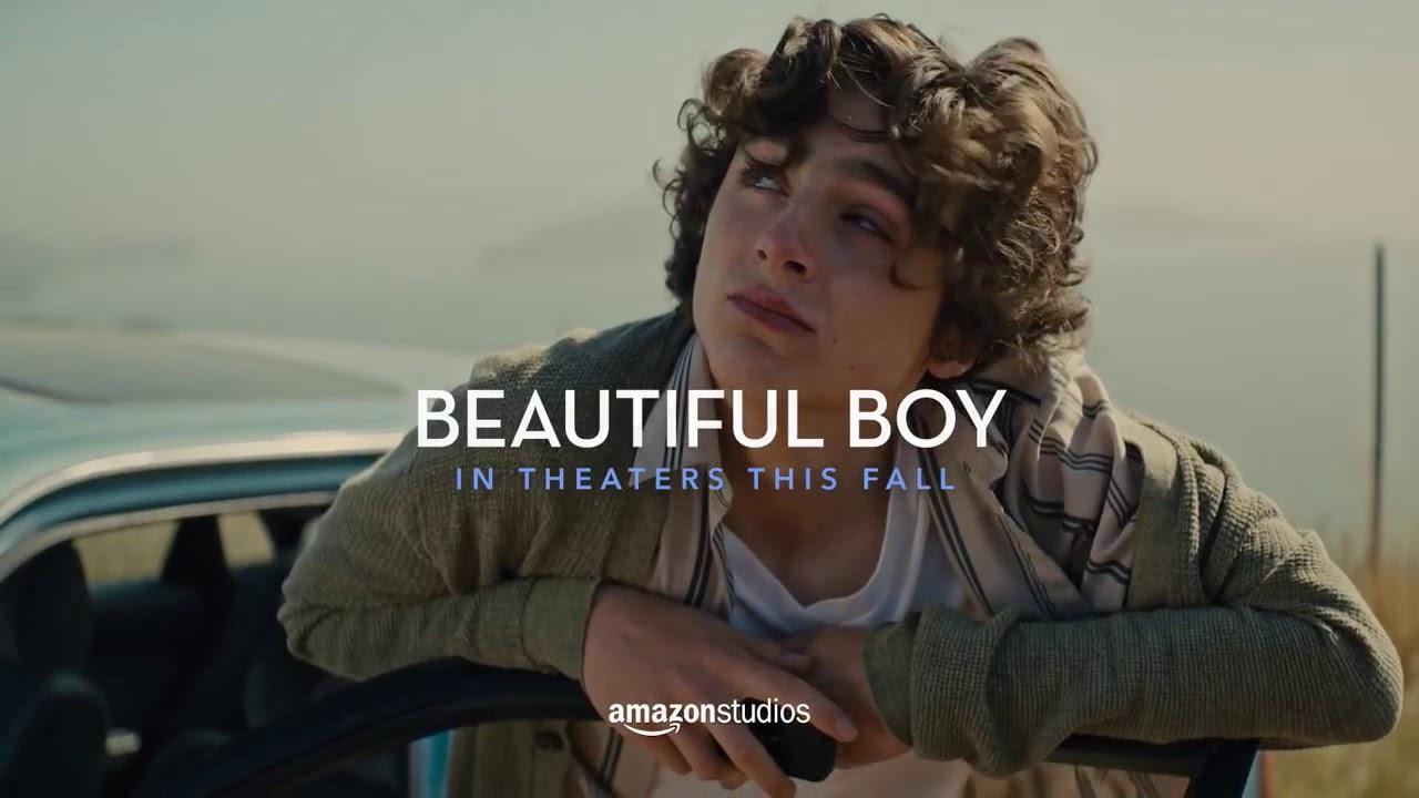 Resultado de imagen para BEAUTIFUL BOY film