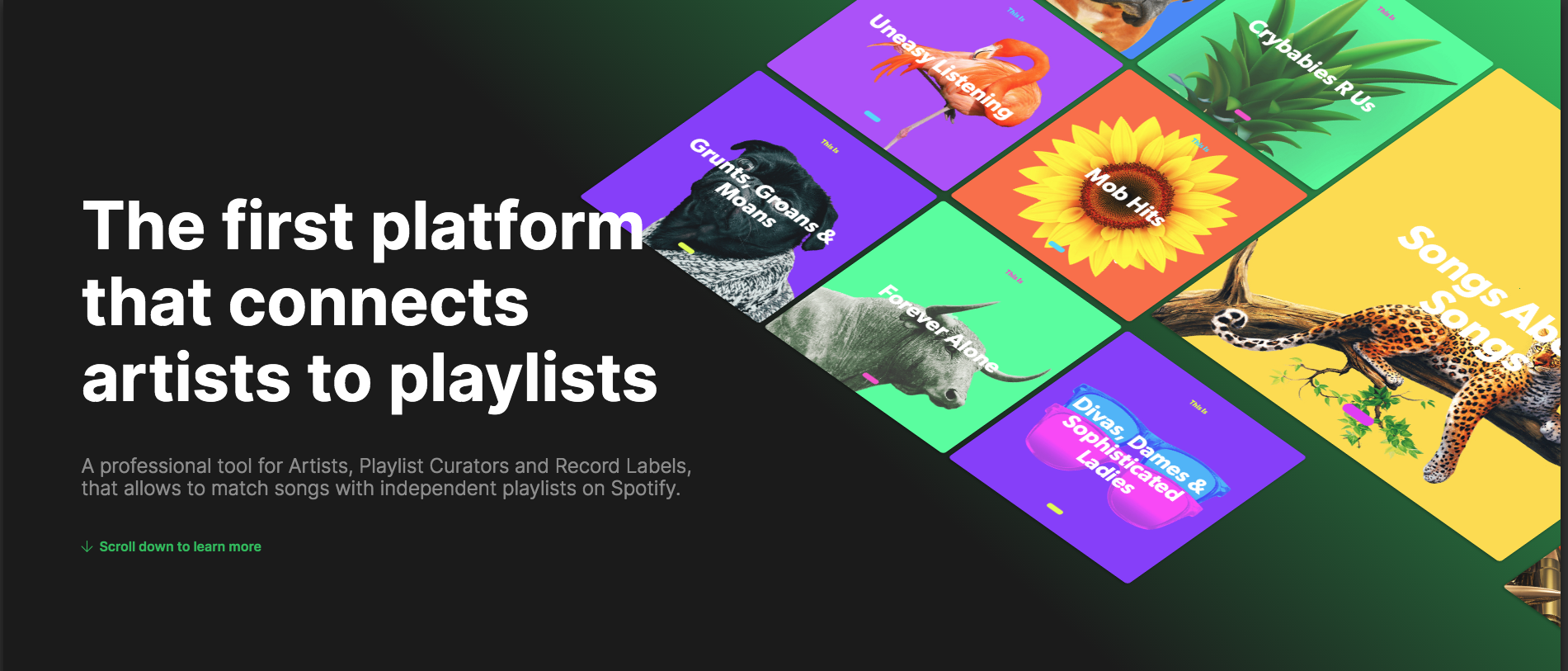 SpotiMatch Wants To Connect Artists To The Right Spotify Playlists